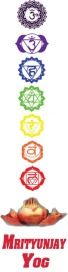 Chakras with name small size